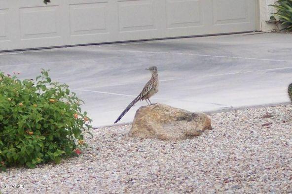 30083 N. Gecko Trail, San Tan Valley, AZ 85143 Photo 56