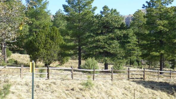 220 W. Zane Grey Cir., Christopher Creek, AZ 85541 Photo 52
