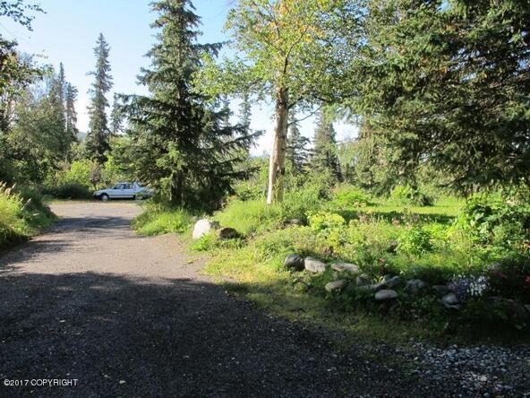 7840 E. 130th Avenue, Anchorage, AK 99516 Photo 21