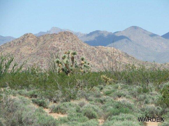 3181 Butch Cassidy Rd., Yucca, AZ 86438 Photo 23