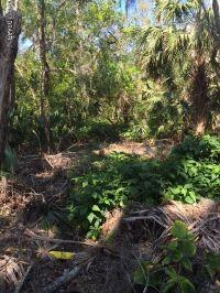 Home for sale: 00 Spruce St., New Smyrna Beach, FL 32168