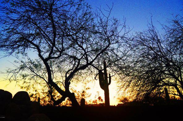 23434 N. 78th St., Scottsdale, AZ 85255 Photo 8