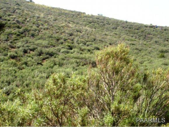 12991 E. Oak Hills Trail, Mayer, AZ 86333 Photo 9