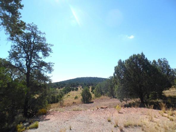 459 Hardrock Rd., Seligman, AZ 86337 Photo 31