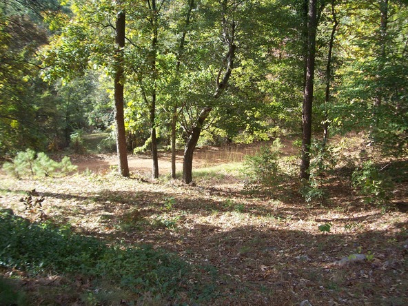 280 Lost End Trail, Hot Springs, AR 71913 Photo 19