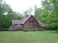 Home for sale: 159 Holly Ln., Fancy Gap, VA 24328