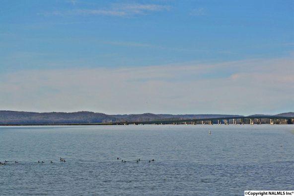 0 Signal Point Rd., Guntersville, AL 35976 Photo 10