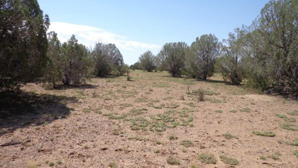 261 Juniperwood Ranch Lot 261, Ash Fork, AZ 86320 Photo 47