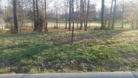 Home for sale: 101 Gaither Farm, Shepherdsville, KY 40165