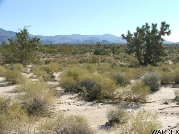 1752 E. Boriana Mine Rd., Yucca, AZ 86438 Photo 12