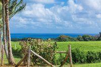 Home for sale: Koolau Rd., Kilauea, HI 96754
