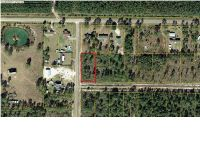 Home for sale: 1 Pleasant Rest Rd., Wewahitchka, FL 32456
