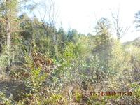Home for sale: Tbd Hooks Mill Rd., Leslie, GA 31764