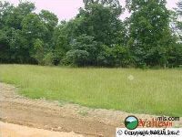 Home for sale: County Rd. 1009, Fort Payne, AL 35968