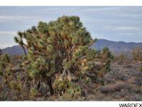 Home for sale: 2089 Roadrunner, Yucca, AZ 86438