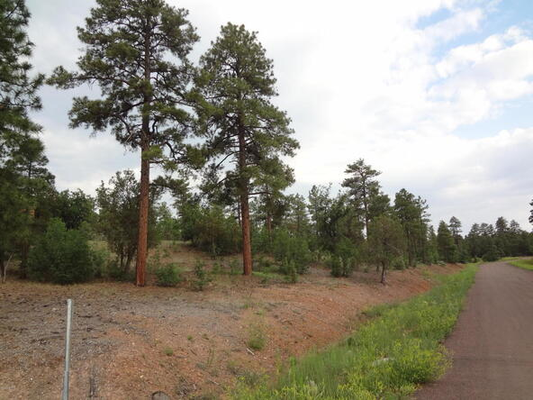 7227 Andromeda Way, Lakeside, AZ 85929 Photo 74