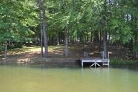 Home for sale: 619 Timber Cove Dr., Jacksons Gap, AL 36861