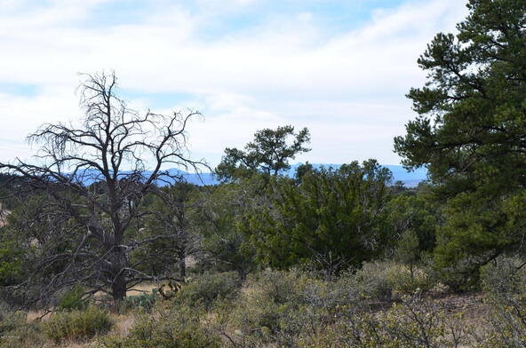 13991 N. Grey Bears Trail, Prescott, AZ 86305 Photo 27