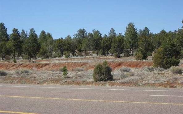 2328 Hwy. 260, Overgaard, AZ 85933 Photo 7