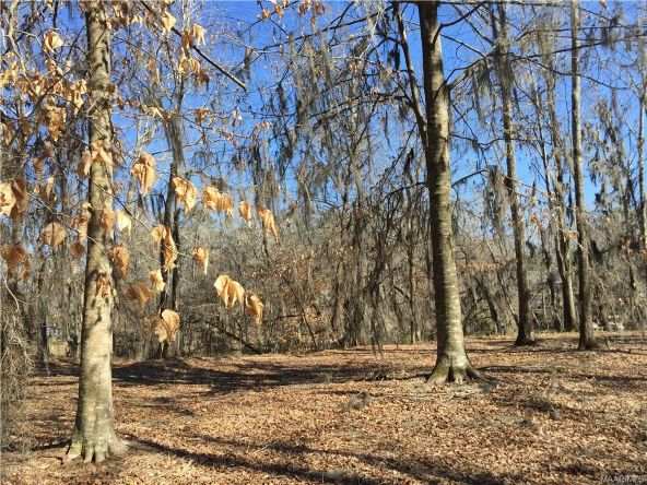 17 Red Eagle Rd., Lowndesboro, AL 36752 Photo 5