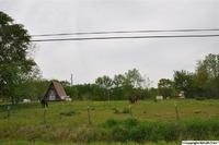 Home for sale: 11945 Hwy. 69, Baileyton, AL 35019