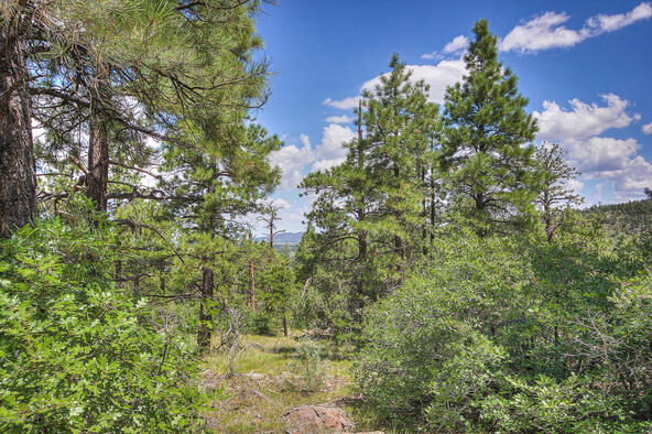 1676 Canyon View Loop, Williams, AZ 86046 Photo 4