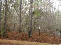 Home for sale: Hwy. 521 And Black Jack Kn., Andrews, SC 29510