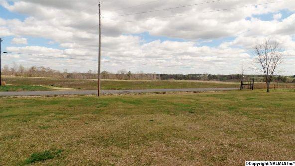 547 County Rd. 550, Grove Oak, AL 35975 Photo 3