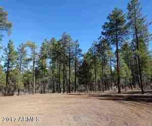 1090 W. Sadler Ln., Lakeside, AZ 85929 Photo 27