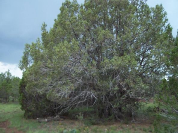 7937 N. Perrin Ln., Williams, AZ 86046 Photo 5