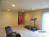 Home for sale: 875 Citrine View, Colorado Springs, CO 80921