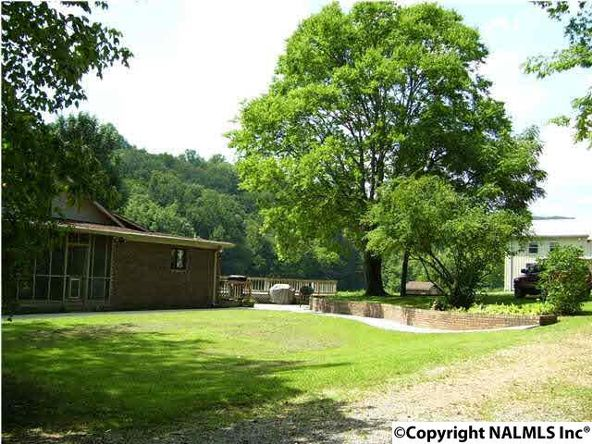 621 County Rd. 604, Hollytree, AL 35751 Photo 6