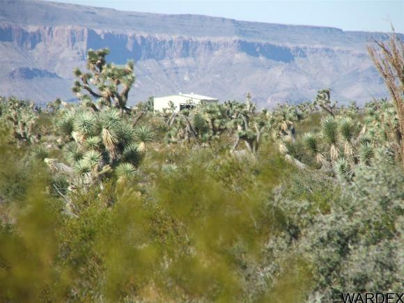 1752 E. Boriana Mine Rd., Yucca, AZ 86438 Photo 7
