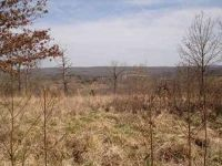 Home for sale: Lot #11 Enchanted Meadows, Mansfield, MO 65704