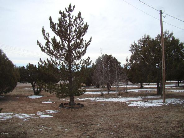 1276 Lone Pine Dam Rd., Show Low, AZ 85901 Photo 23
