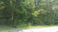 Home for sale: Swamp Fox/Indigo Flts Rd., Tabor City, NC 28463