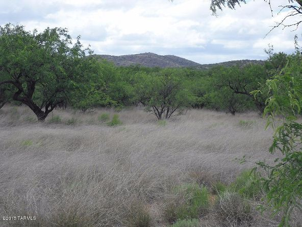 16005 Ranger Rd., Arivaca, AZ 85601 Photo 3