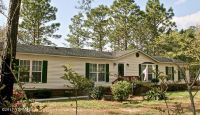 Home for sale: 113 Topsail Lake Dr., Hampstead, NC 28443