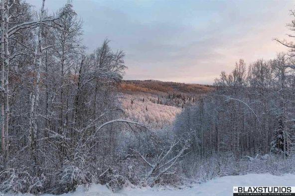 1150 Amanita Rd., Fairbanks, AK 99712 Photo 20