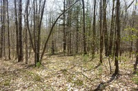 Home for sale: Lot 3 North Hill Rd., Chester, VT 05143