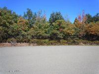 Home for sale: 237 Dana Ct., Albrightsville, PA 18210