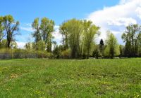 Home for sale: Lot 14 Miles Meadow, Afton, WY 83110