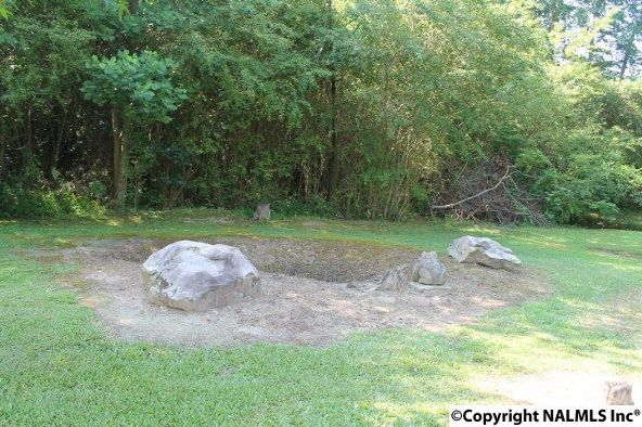 1210 County Rd. 23, Geraldine, AL 35974 Photo 35