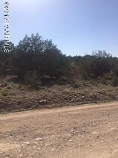 3999 W. Cedar Heights Rd., Chino Valley, AZ 86323 Photo 4