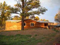 Home for sale: 472 Haystack Cir., Pagosa Springs, CO 81147