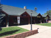 Home for sale: 1555 W. White Mountain Blvd., Lakeside, AZ 85929