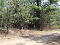 Home for sale: On Forest Rd., Tomahawk, WI 54487