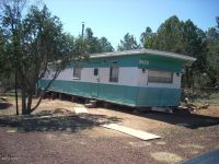 Home for sale: 3409 Apache Dr., Overgaard, AZ 85933