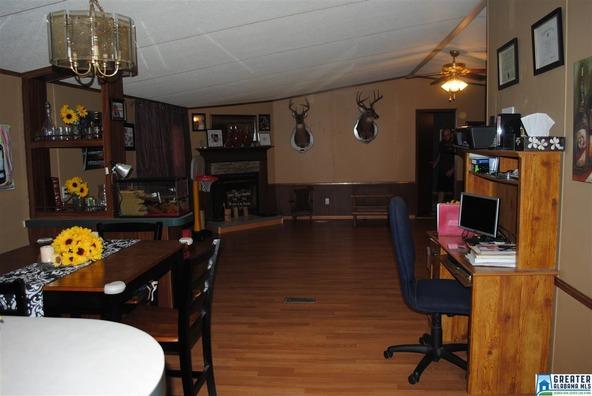 41 Norton Rd., Sylacauga, AL 35151 Photo 38