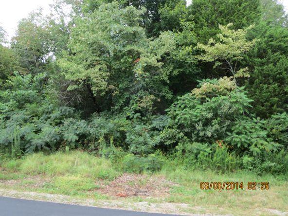409 Cayuga Dr., Loudon, TN 37774 Photo 3